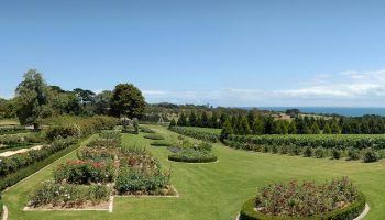 Australian Morning Star Estate up for sale with $30 million price tag