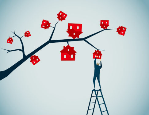 Property investors – stick around and watch your investment grow…