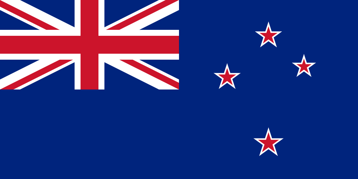 New Zealand bans foreign investors from buying homes