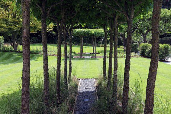 Trees For Property & Commercial Landscape Design