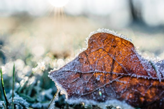 Top Tips for Landlords Battling the Winter Weather