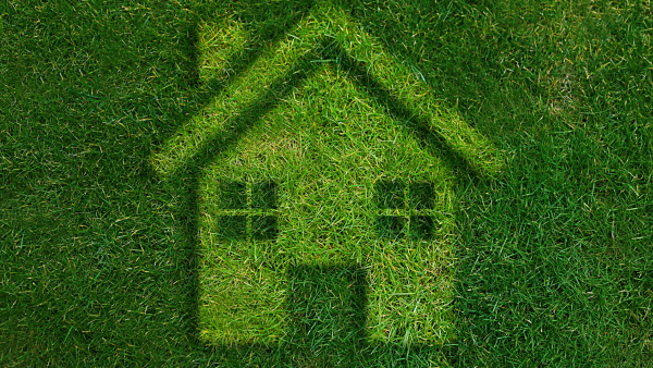 Don't miss out on the Government's Green Homes Grant!